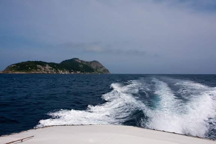 Ilha Queimada Grande - Ilha das Cobras